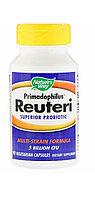 Reuteri. Улучшенный пробиотик для кишечника. 90 капсул. Nature's way.