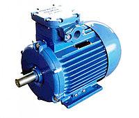 Электродвигатель 3В200L4У2,5