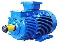 Электродвигатель 4АМН280S-2