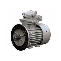 Электродвигатель 1ВАО-450М-4У2,5