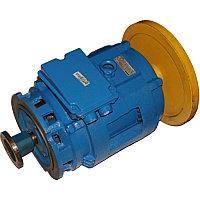 Электродвигатель 4АМН 315-2УЗ
