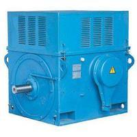 Электродвигатель ДАЗО4-450-4