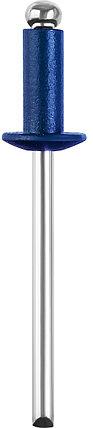 Алюминиевые заклепки Color-FIX, STAYER, 4.0 х 10 мм, RAL 5005 синий насыщенный, 50 шт. (3125-40-5005), фото 2