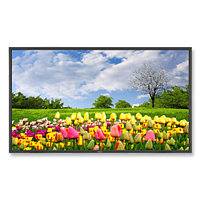 NEC MultiSync® X462HB led / lcd панель (60003174)