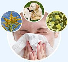 Аллергия. Комплекс - 2, 3-х месячный курс.
