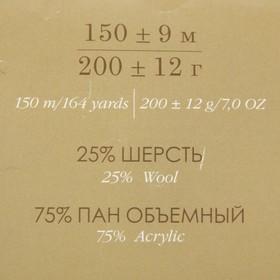 Пряжа 'Осенняя' 25 шерсть, 75 ПАН 150м/200гр (156-Индиго) - фото 3