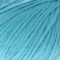 """Пряжа """"Baby Wool XL"""" 20% кашемир, 40% меринос. шерсть, 40% акрил 100м/50гр (820 голубой)"""
