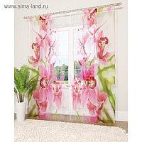 Фототюль «Душистая орхидея», размер 145 х 260 см - 2 шт., вуаль