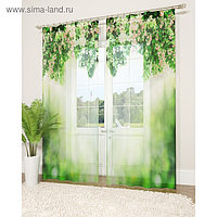 Фототюль «Зелёный занавес», размер 145 х 260 см - 2 шт., вуаль