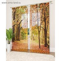 Фототюль «Осенний листопад», размер 145 х 260 см - 2 шт., вуаль