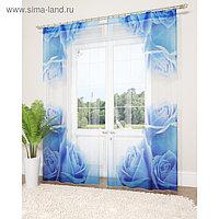 Фототюль «Синие розы», размер 145 х 260 см - 2 шт., вуаль