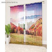 Фототюль «Волшебный пейзаж», размер 145 х 260 см - 2 шт., вуаль