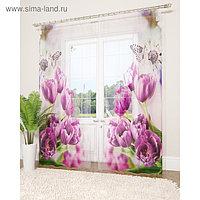 Фототюль «Фиолетовые тюльпаны», размер 145 х 260 см - 2 шт., вуаль