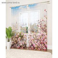 Фототюль «Париж с моего окна», размер 145 х 260 см - 2 шт., вуаль