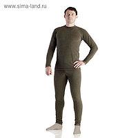 Комплект мужской термо «Норд» (джемпер, брюки), цвет хакки, размер 46, рост 176