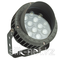 Светильник LED SP001 12W 6000K