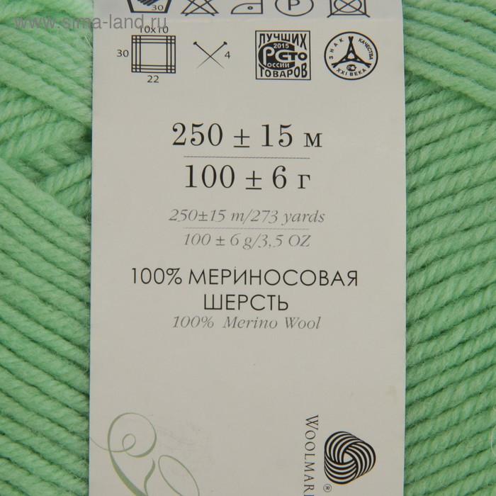 """Пряжа """"Элегантная"""" 100% мериносовая шерсть 250м/100гр (86-Анис) - фото 3"""