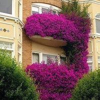Вдохновляющий балкон