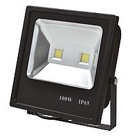 Прожектор LED TS100 100W 6000K ЧЕРНЫЙ (TS)
