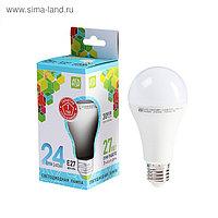 Лампа светодиодная ASD LED-A60-standard, Е27, 24 Вт, 230 В, 4000 К, 2160 Лм