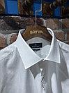 Рубашка мужская Poggino (0302), фото 2