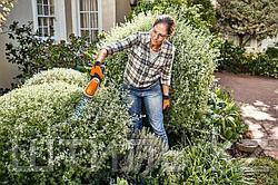 Идеальные формы вашего сада с новинкой 2020 года от STIHL