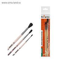 Набор кистей Белка 3 штуки, Calligrata №1 (круглые №: 1, 3, 5) ручка дерево, пакет