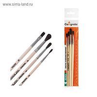 Набор кистей Белка 4 штуки, Calligrata №3 (круглые №: 2, 3, 4; плоская №6) деревянная ручка, пакет