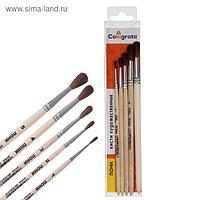 Набор кистей Пони 5 штук, Calligrata №3 (круглые №: 1, 2, 3, 4, 5) деревянная ручка, В ПЕНАЛЕ