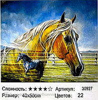 "Картина по номерам "" Пара лошадей"" 50*40см"
