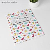 Папка для семейных документов, 2 комплекта, цвет белый