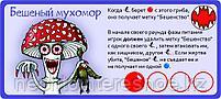 Эволюция. Трава и грибы, фото 6