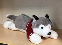 Собачка мягкая Хаски лежачая 65 см