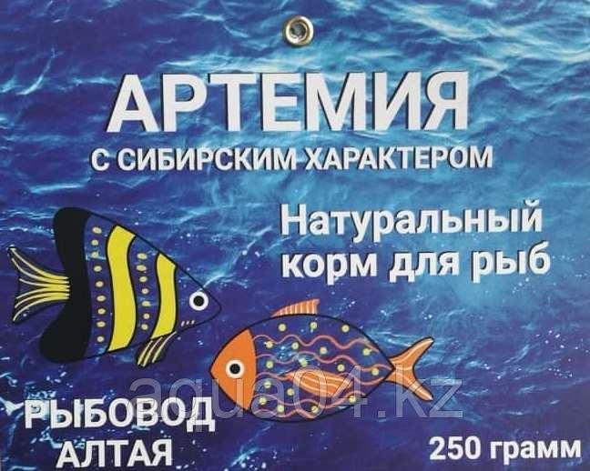 Цисты артемии (75+) (250 грамм)