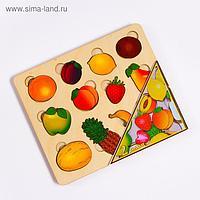 Развивающая доска «Большие фрукты», 2 слоя