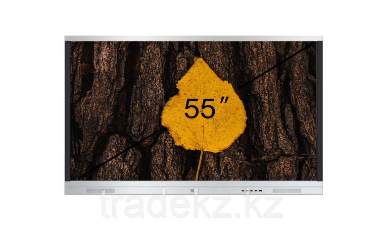 Интерактивная панель DigiTouch DTIP55SM10A60ALG, фото 2