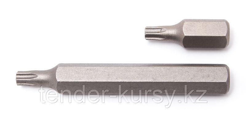 ROCKFORCE Бита TORX T25х75ммL,10мм ROCKFORCE RF-1767525 1042