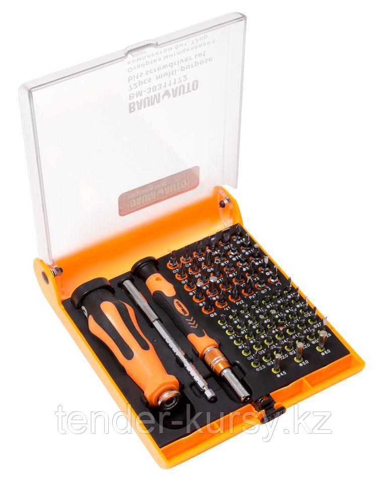 BaumAuto Набор отверток многоцелевых с удлинителем и набором бит для точных работ, 72