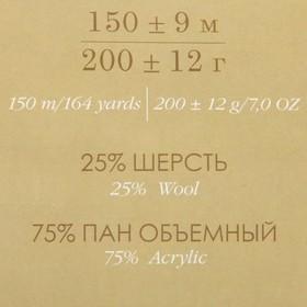 Пряжа 'Осенняя' 25 шерсть, 75 ПАН 150м/200гр (389-Св.фиалка) - фото 3