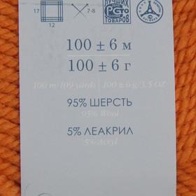 Пряжа 'Зимний вариант' 95 имп.шерсть, 5 акрил объёмный 100м/100гр (259-Осенний лист) - фото 3