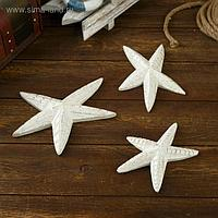 "Сувенир из дерева ""Морская звезда"" (набор 3 штуки) 20х15х8 см"