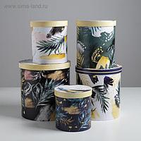 Набор подарочных коробок 5 в 1 Tropical gift, 13 × 14 19.5 × 22 см