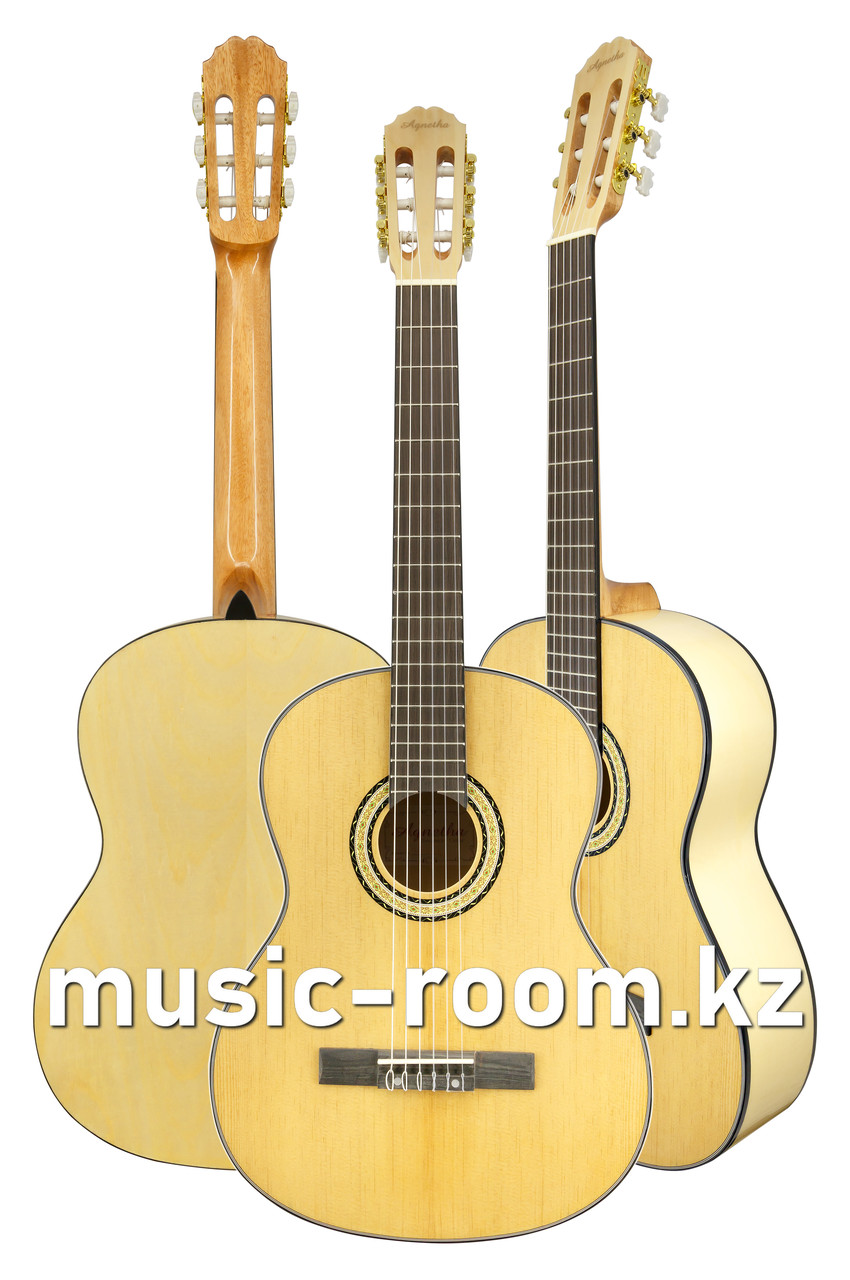 Гитара классическая Agnetha AСG-E160 N