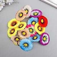 "Цветы для декорирования ""Хризантема маскарад"" набор 15 шт МИКС 3,5х3,5 см"