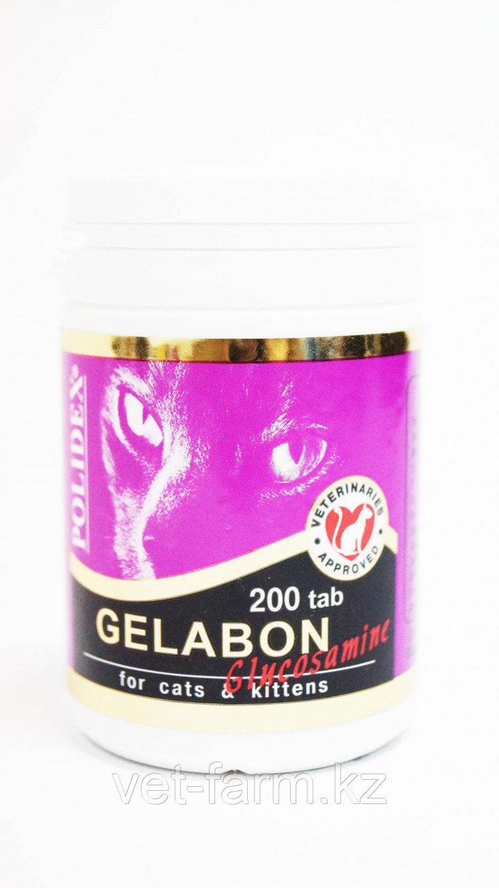 Полидекс Гелабон с глюкозамином 200 таб.