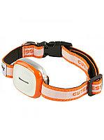 GPS трекер для собак GT011