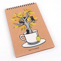Блокнот-SketchBook 40л А5 на спирали -Волшебное чаепитие- Эксмо 4738