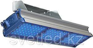 TL-PROM SM 150 FL D Blue