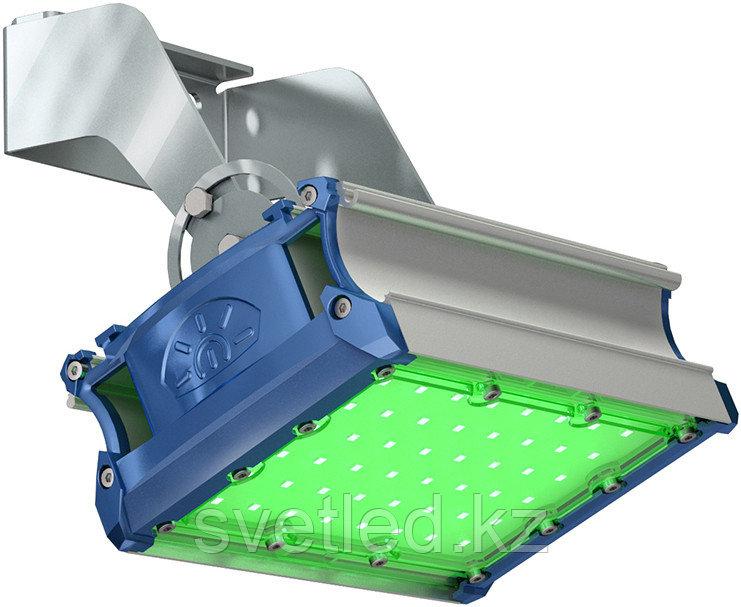 Ландшафтный светильник TL-PROM SM 50 FL D Green