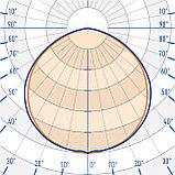 Ландшафтный светильник TL-PROM SM 50 FL D Green, фото 3